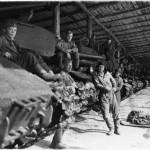 Танки ИС-2 и их экипажи из бывшего 88-го отдельного тяжелого танкового полка рядом с построенным в немецком Гюстрове танковым парком. После Победы из трех отдельных полков, в том числе и из 88-го тяжелого танкового полка, был сформирован 74-й тяжелый танко-самоходный полк (командир полковник Р.М. Либерман).
